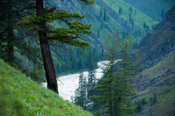 Idaho's Frank Church Wilderness